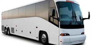 50 px Bus Angle
