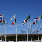 International flags flown at O'Hare Airport in Chicago, IL