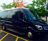 Wow your guests with our luxury passenger rentals
